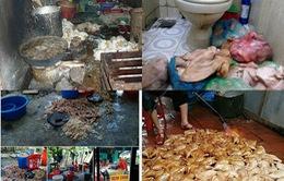 Gần 5.000 người ngộ độc do thực phẩm bẩn trong năm qua