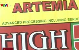 Áp thuế nhập khẩu 3% trứng Artemia: DN phản đối quyết liệt