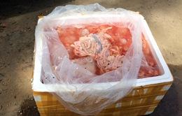 Phát hiện xe tải chở gần 2 tấn nội tạng động vật hôi thối vào Nam tiêu thụ
