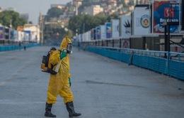 Tổng thống Brazil kêu gọi đối phó virus Zika