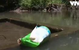 Quảng Trị: Dùng thuốc BVTV bừa bãi, nguồn nước ô nhiễm nặng