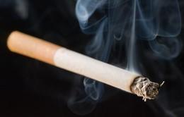"""Phụ nữ coi chừng ung thư phổi do """"ngửi ké"""" khói thuốc"""