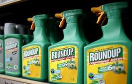 Châu Âu trì hoãn ra quyết định về thuốc diệt cỏ