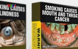 WHO kêu gọi các nước in bao bì thuốc lá trơn