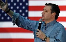 Bầu cử Mỹ: Thượng nghị sỹ Ted Cruz giành chiến thắng tại Kansas