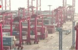WTO: Thương mại toàn cầu ở mức tồi tệ nhất kể từ 1980