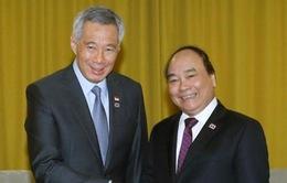 Việt Nam coi trọng phát triển quan hệ mọi mặt với Singapore