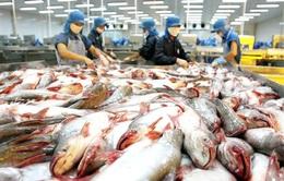 Cá da trơn Việt Nam tiếp tục có cơ hội tại thị trường Mỹ