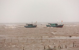 Bão số 1: Kịp thời cứu 3 ngư dân Nam Định trên tàu gặp nạn