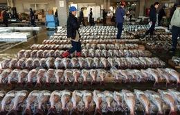 Ngành thủy sản Fukushima chật vật sau thảm họa kép