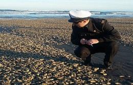 Chile ban bố tình trạng khẩn cấp thủy triều đỏ