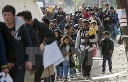 EU giải ngân 3 tỷ Euro trợ giúp người tị nạn Syria ở Thổ Nhĩ Kỳ