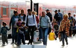 Pháp sẽ để người tị nạn tự do sang Anh nếu London rời EU