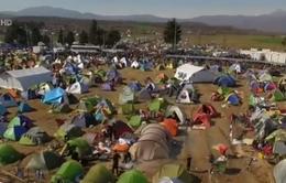 EU sẽ tuyên bố đóng cửa con đường di cư khu vực Balkan