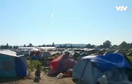 Chờ biên giới mở cửa, người di cư mở tiệm kinh doanh tại Hy Lạp
