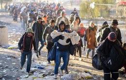 Mỹ tiếp nhận 4.700 người tị nạn Syria
