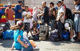 Số người xin tị nạn tại Đức có chiều hướng giảm