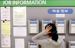 Gian nan công cuộc tìm việc của cử nhân Hàn Quốc