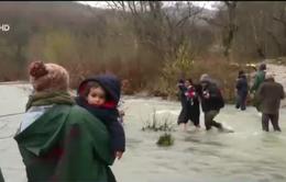 Hàng trăm người tị nạn vật lộn vượt sông để vào Macedonia