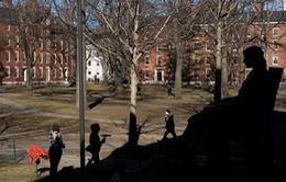 Mỹ: Hơn 200 trường ĐH và CĐ bị điều tra do không xử lý các vụ lạm dụng tình dục