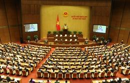 Báo cáo Quốc hội kết quả bầu cử Quốc hội và HĐND các cấp