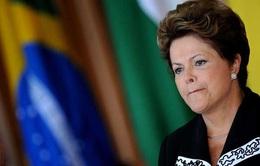 Thượng viện Brazil bỏ phiếu đình chỉ công tác Tổng thống