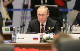 Tổng thống Putin mời Ngân hàng AIIB tham gia các dự án tại Nga
