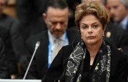 Quốc hội Brazil bỏ phiếu đồng ý truy tố Tổng thống