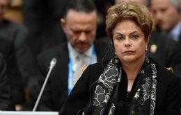 Hạ viện Brazil quyết định luận lội Tổng thống Rousseff