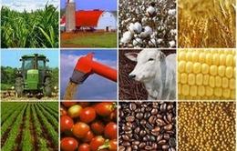 Việt Nam tập trung tái cơ cấu nông nghiệp, hội nhập Cộng đồng kinh tế ASEAN