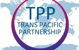 Việt Nam đã sẵn sàng ký kết Hiệp định TPP vào ngày mai (4/2)