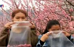 """Giới trẻ Trung Quốc lên núi mua túi nilon đựng """"không khí sạch"""""""