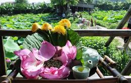 Trà sen Hồ Tây: Nét độc đáo mùa hè của Hà thành