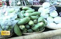 Ngày hội trái cây Việt Nam tại Cộng hòa Czech