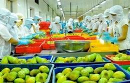 Trái cây xuất khẩu - động lực mới của nông nghiệp