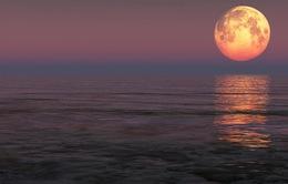 Những địa điểm tốt nhất để ngắm siêu trăng