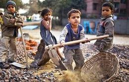 168 triệu trẻ em bị bóc lột sức lao động