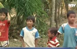 Gần 25% trẻ em Việt Nam thấp còi