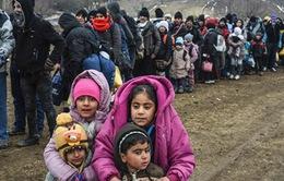 Gần 5.000 trẻ em mất tích tại Đức