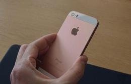 iPhone SE xách tay ế ẩm sau khi về Việt Nam