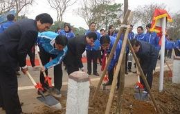 Tuổi trẻ Thủ đô hưởng ứng lời kêu gọi Tết trồng cây đầu năm mới