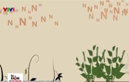 Vì sao nên sử dụng phân bón hữu cơ vi sinh thay cho phân hóa học?
