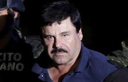 Trùm ma túy El Chapo sắp bị dẫn độ tới Mỹ
