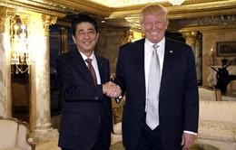 Sự kiện quốc tế nổi bật tuần qua: Thủ tướng Nhật Bản gặp Tổng thống đắc cử Mỹ