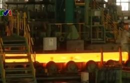 Người Trung Quốc bất ngờ đầu cơ vào nguyên liệu sản xuất