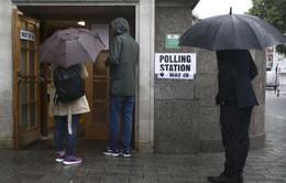 Bắt đầu cuộc trưng cầu dân ý tại Anh