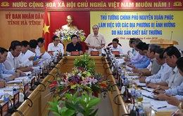 Thủ tướng chỉ đạo khắc phục hậu quả hải sản chết bất thường