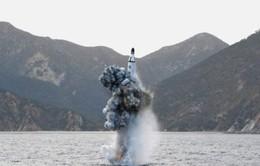 Triều Tiên phóng tên lửa đạn đạo từ tàu ngầm