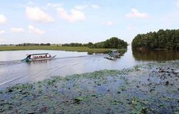Hơn 90 tỷ đồng phát triển du lịch vườn quốc gia Tràm Chim