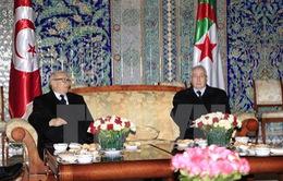 Nhân vật quyền lực số 2 tại Algeria được bầu lại chức vụ